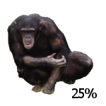 tube thumbnail - chimp